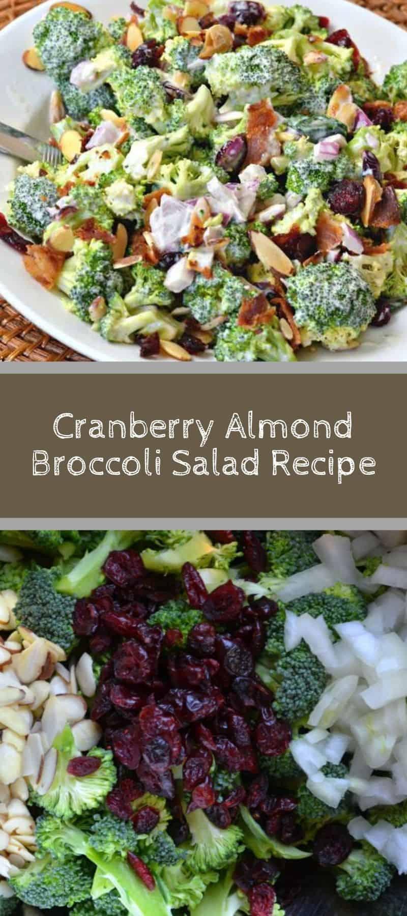 Cranberry Almond Broccoli Salad Recipe 3